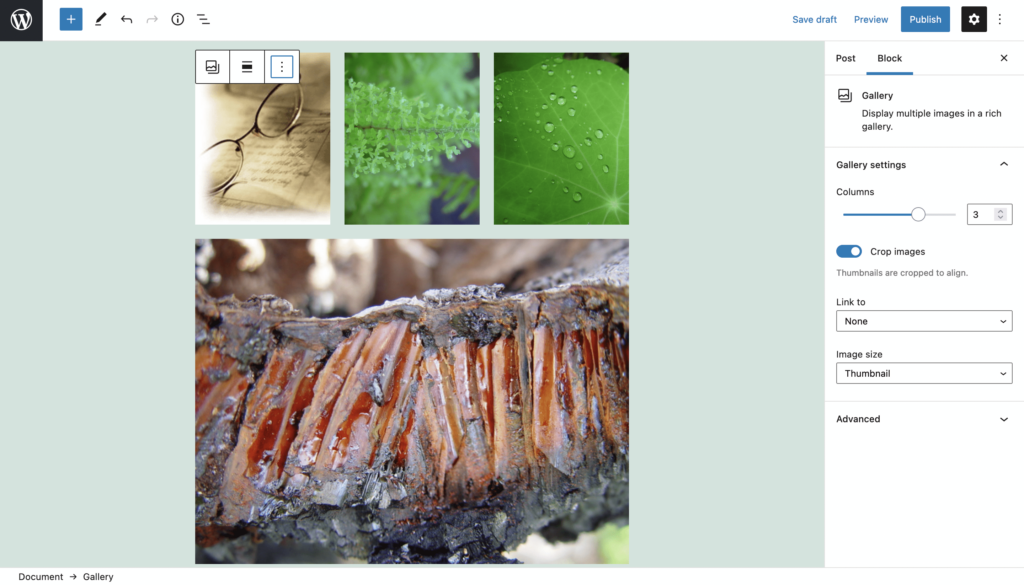 How to Create an Image Gallery with WordPress - Step 5