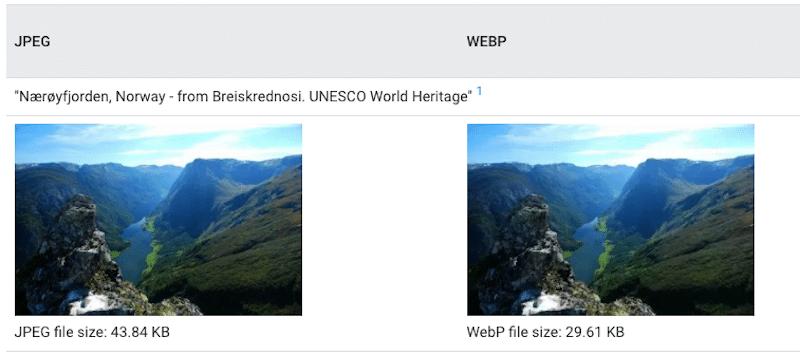 JPEG vs WebP: same quality but different size - Source: WebP Gallery