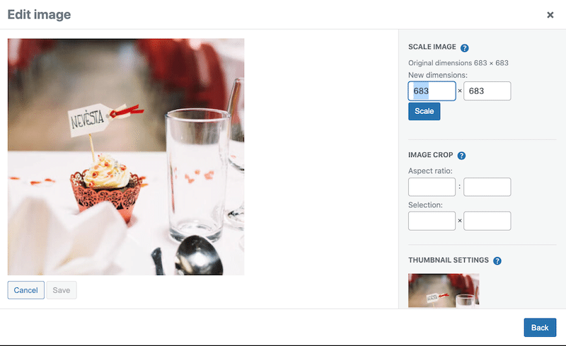 Resizing a picture manually - Source: WordPress library